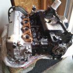 Fresh Motor